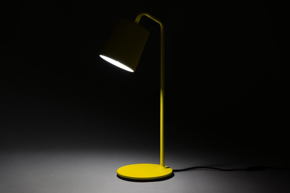 Hide Table Lamp (WD-1050)