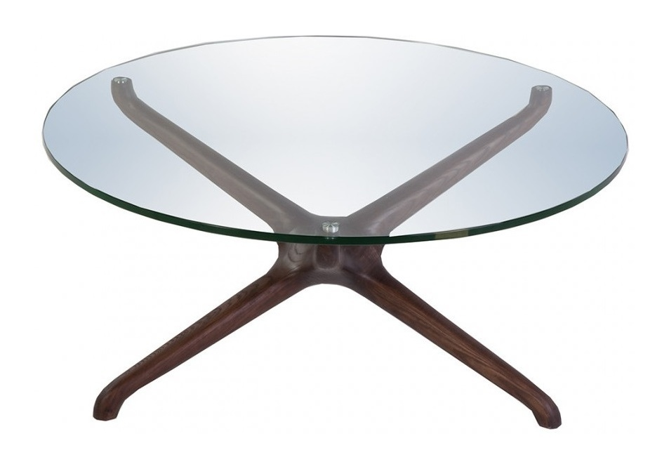 Asteroidea coffee table II